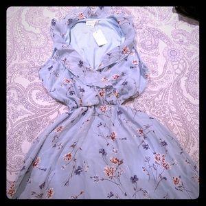 Paris to Jena Blue Floral Dress
